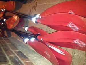 Paddles at the ready...