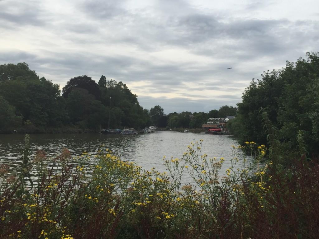 Thames at Richmond