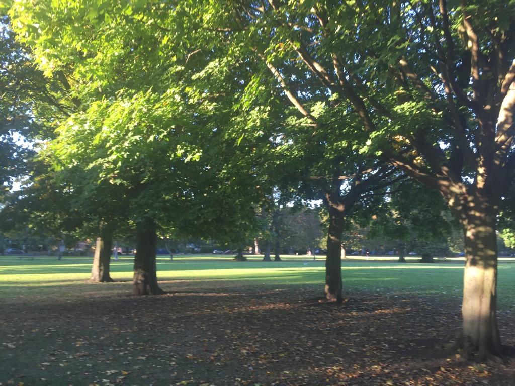 Pearsons Park, Hull