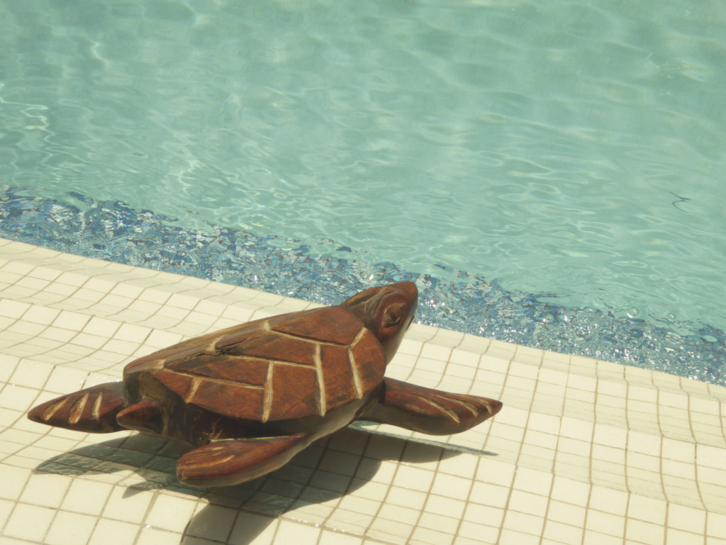Island Magic Beach Resort swimming pool