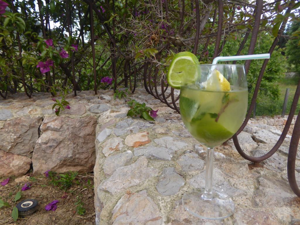 Cocktail making in Travelopo villa Mallorca