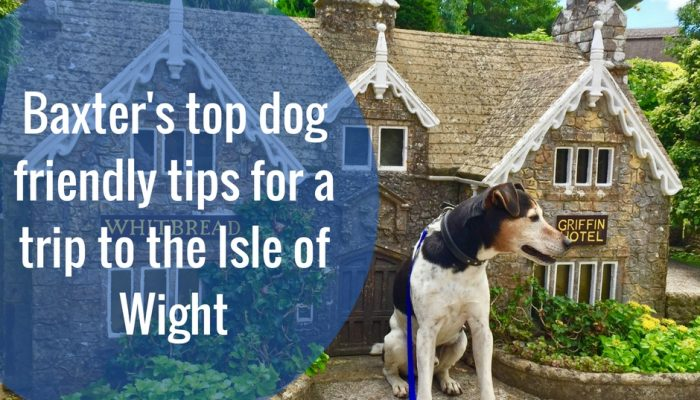 Isle of Woof: Baxter's top dog friendly tips for a trip to the Isle of Wight