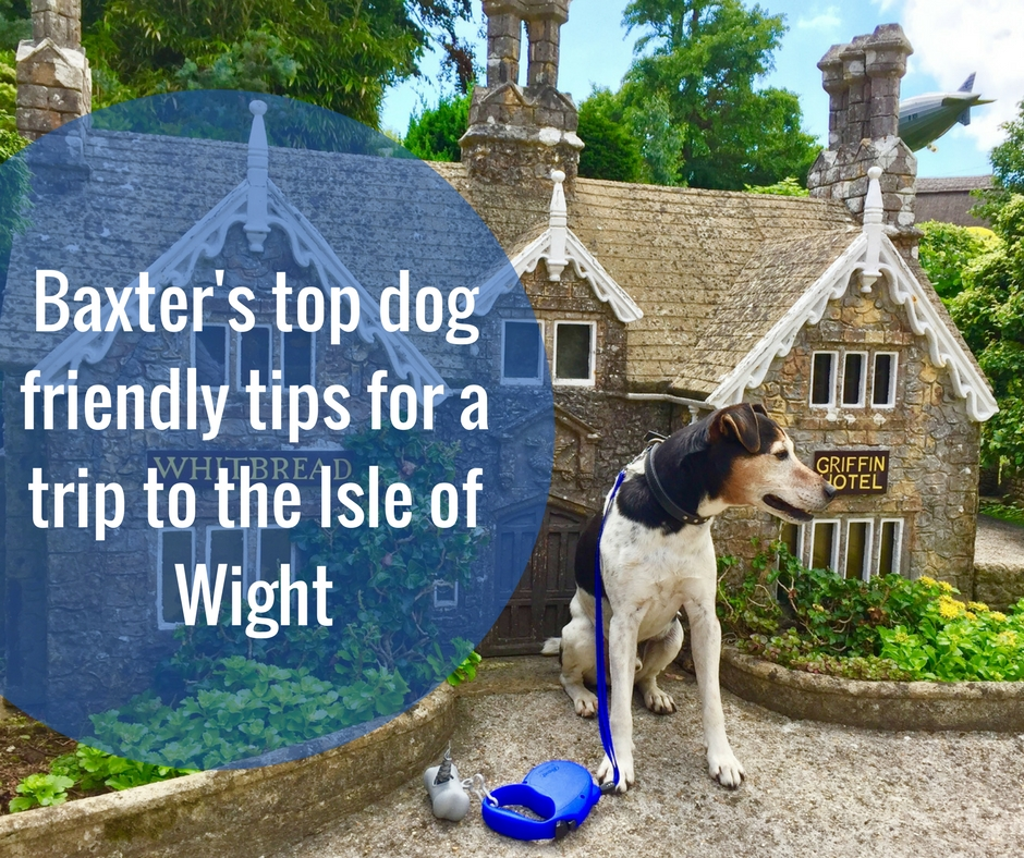 Baxter's top dog friendly tips for a trip to the Isle of Wight