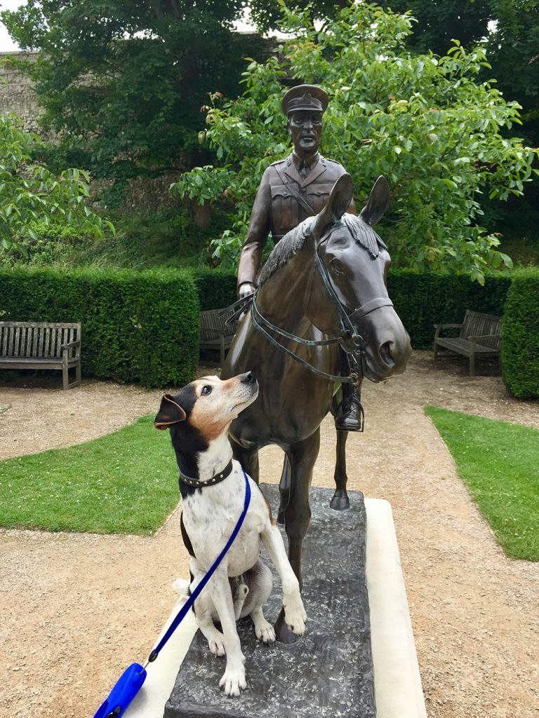 Baxter the Legend at Carisbrooke Castle