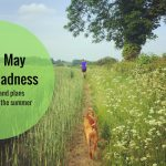 May madness and plans for the summer