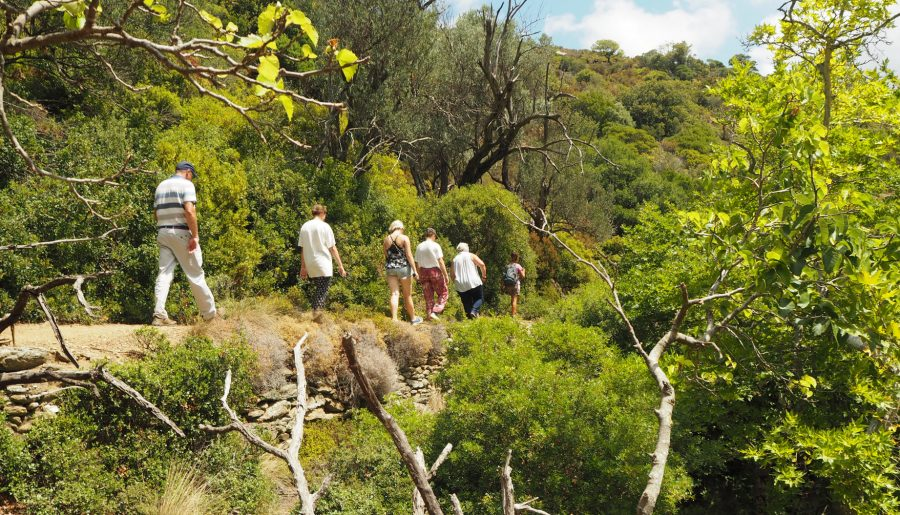Best hiking in Greece – the historic trails of Andros