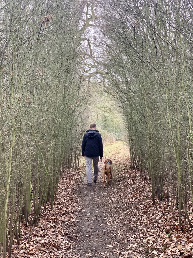 country walks in the Cotswolds
