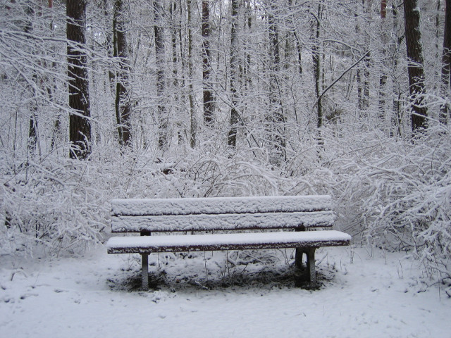 Snowy bench at Center Parcs