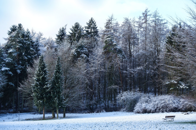 snowy scene at Center Parcs