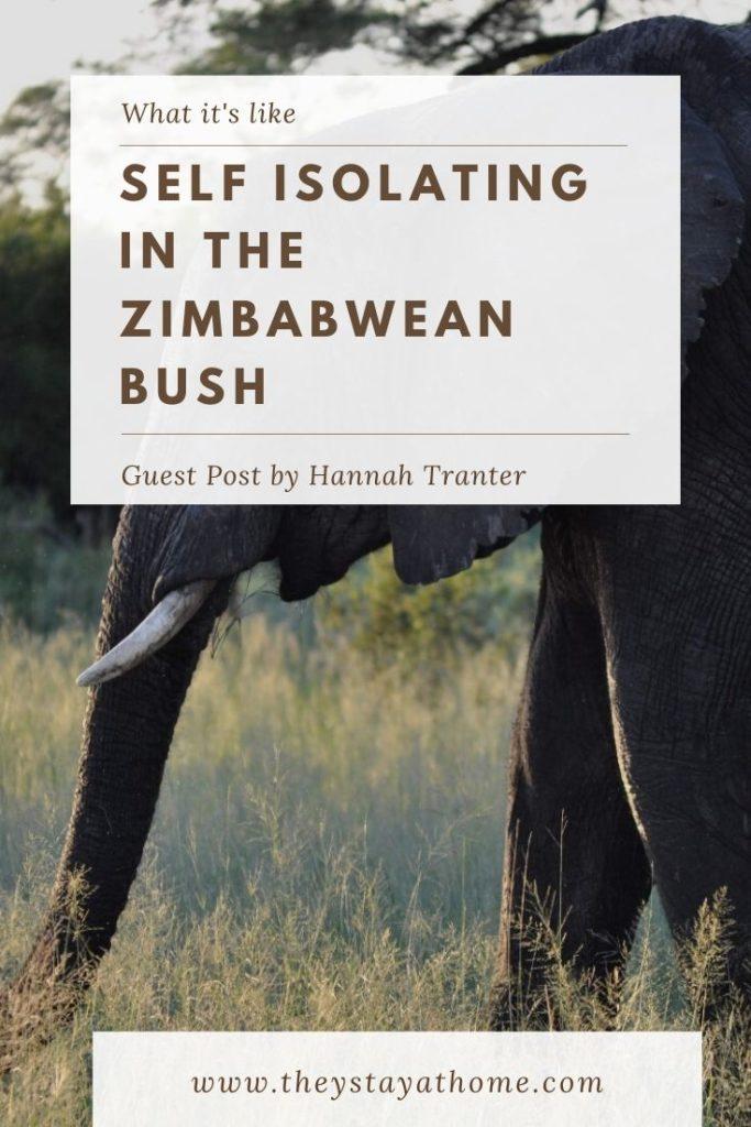 self isolating in the zimbabwean bush