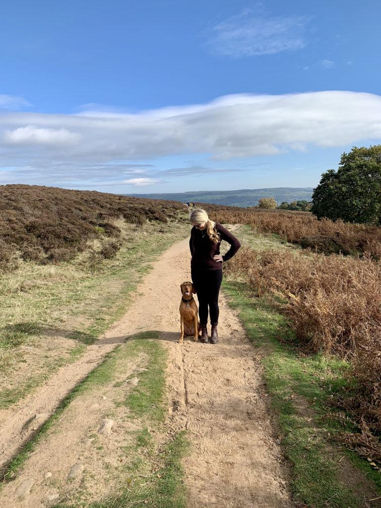 5 Best dog walks in Derbyshire - Stanton Moor