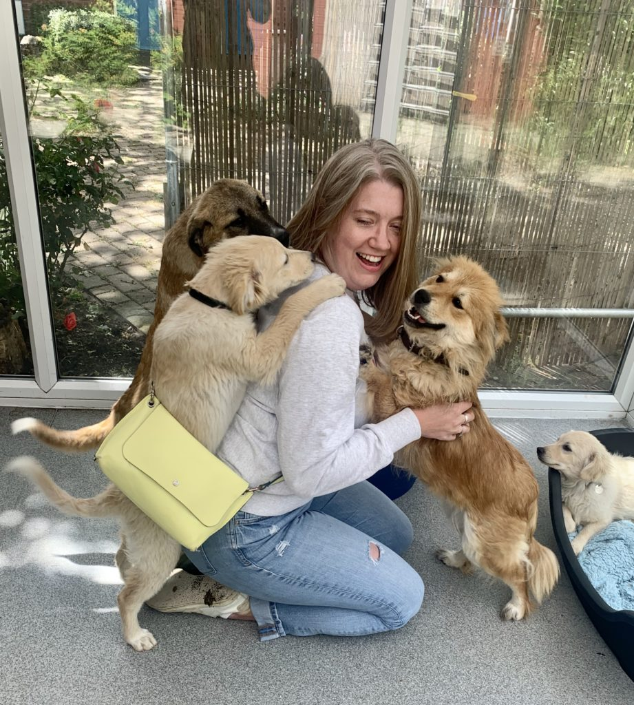 Cookie and her mum - rescue dogs from Romania
