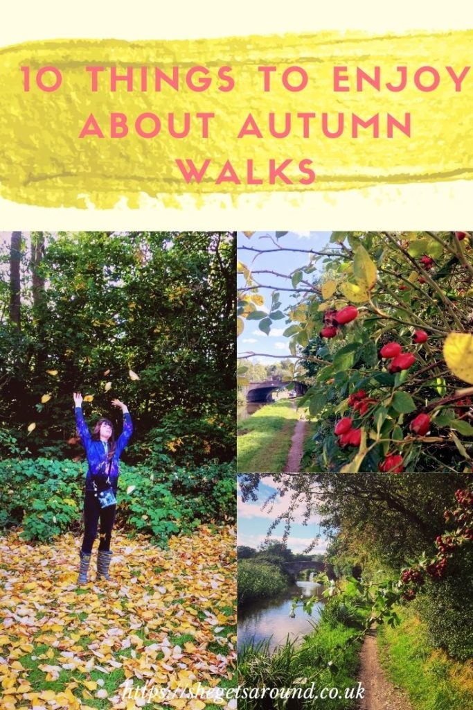 10 Things to Enjoy about Autumn Walks