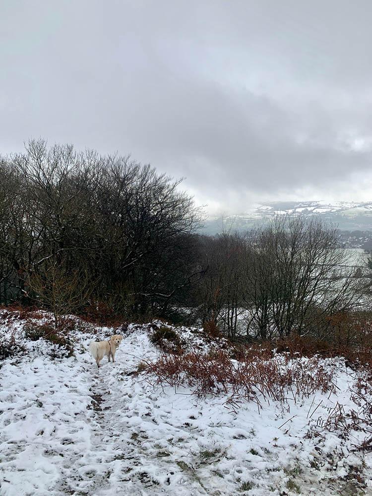 walking in Matlock, Derbyshire in the snow
