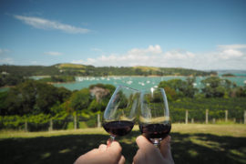 Goldie Winery in Waiheke Island, New Zealand
