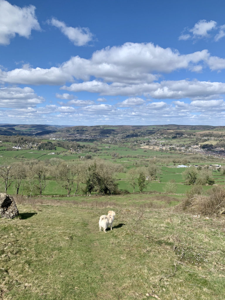 22 reasons Matlock is the best place to live
